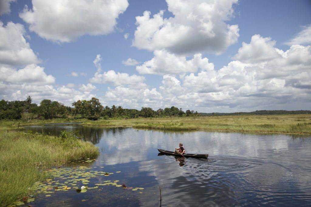 Location photocopieur en Guyane